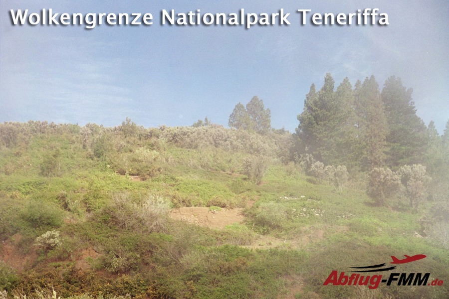 Wolkengrenze Nationalpark Teneriffa