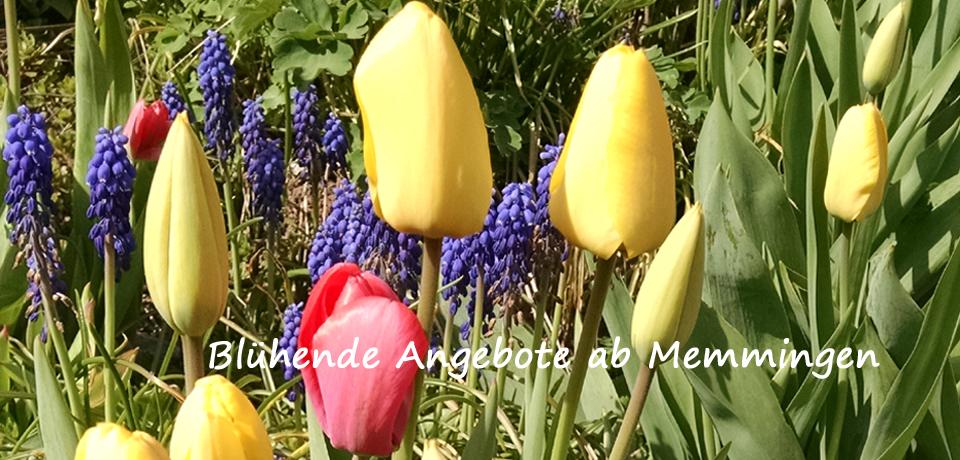 Sommerreisen 2015 ab Memmingen